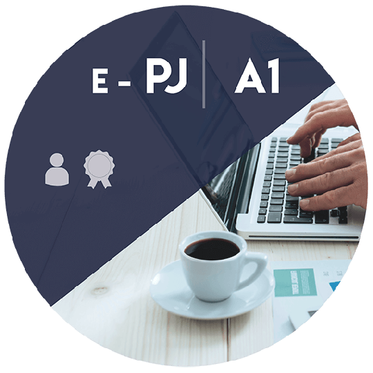 Certificado Digital para Pessoa Jurídica A1 (e-PJ A1)
